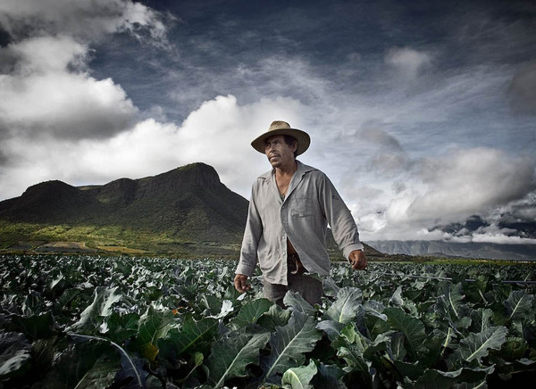 ORGANIC FARMS IN BRAZIL AND MEXICO